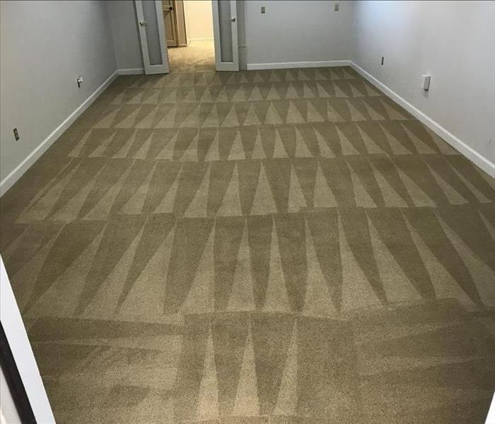 Clean carpet in lounge area