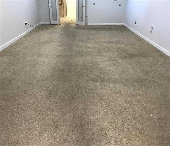 Dirty Carpet in lounge area