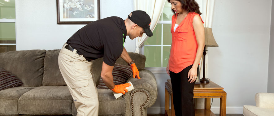 Quincy, IL carpet upholstery cleaning